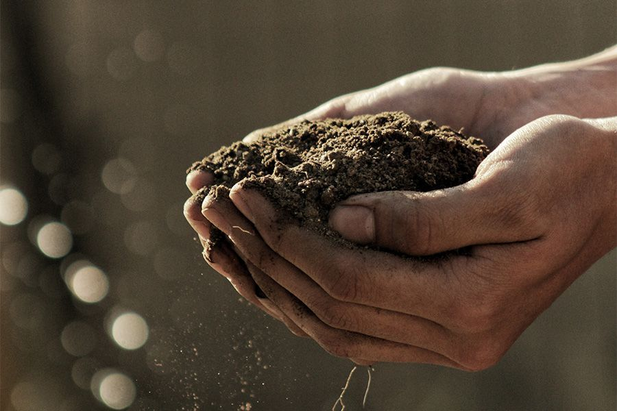 soil for hemp pot