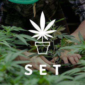 """Hemp garden deal """"ALL IN ONE"""" Grower Set"""