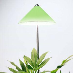 LED plug-in lamp I-Sun